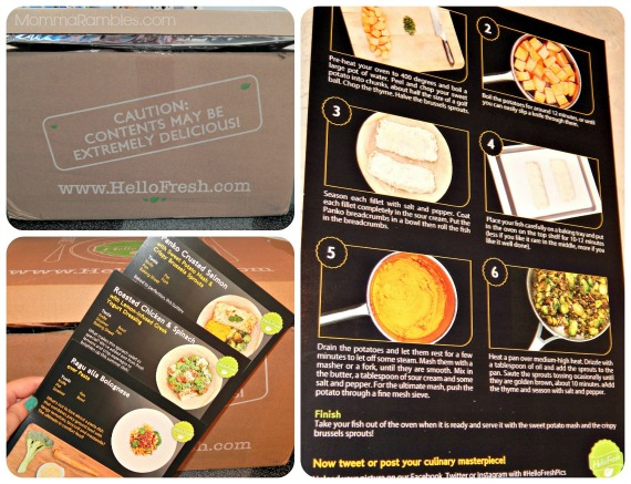Create Healthy & Delicious Meals with HELLO FRESH! ~ #Review