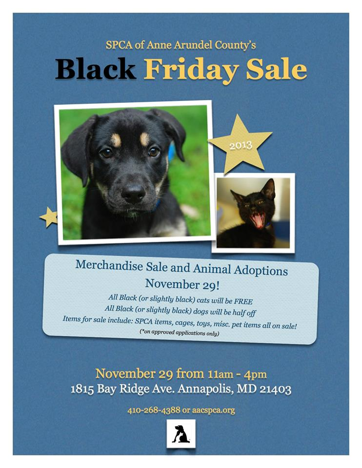 Attention #Maryland! ~ Anne Arundel #SPCA Black Friday Special ~ Help a Pet in Need!