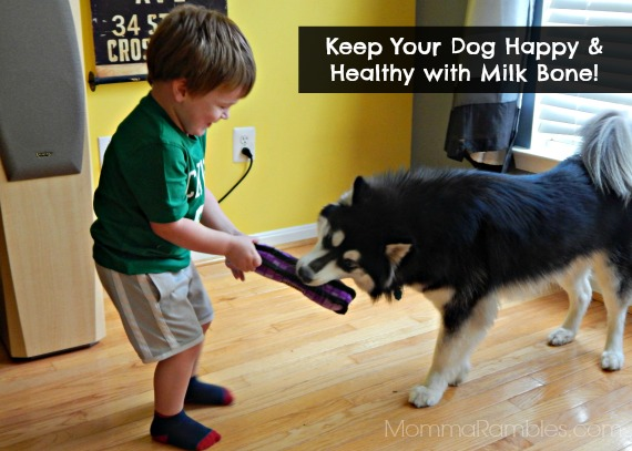 Nothing Says You Care Like @MilkBone Brushing Chews ™ ~ VISA Gift Card #Giveaway