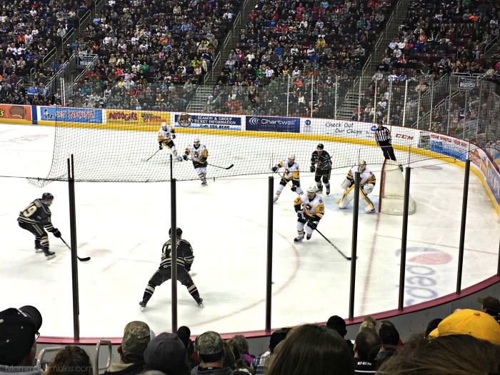 hersheybearshockey