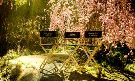 "Production Underway on ""MALEFICENT II"" Starring Angelina Jolie & Elle Fanning"